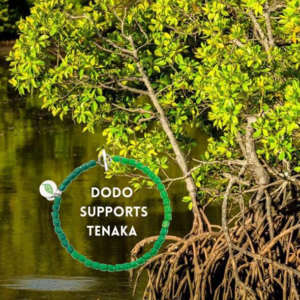 SPECIAL PROJECT: Dodo sostiene il progetto Tenaka